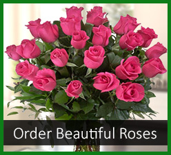 Order Roses, Send Roses, Tacoma Florist